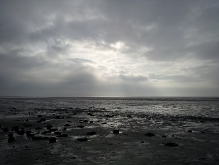 Beautiful muddy Waddenzee