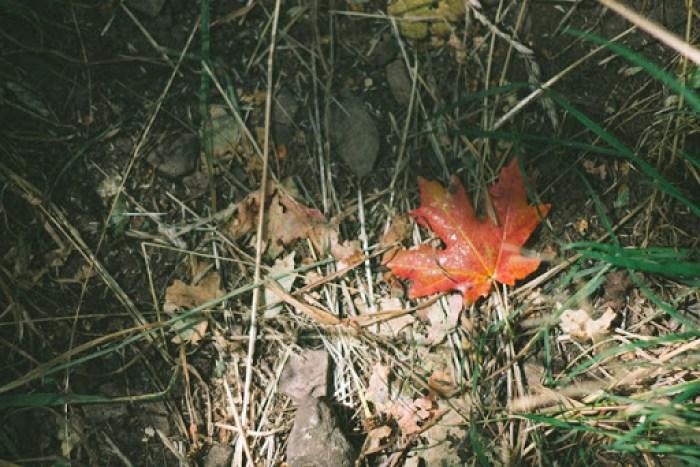 fall hiking in utah (7)