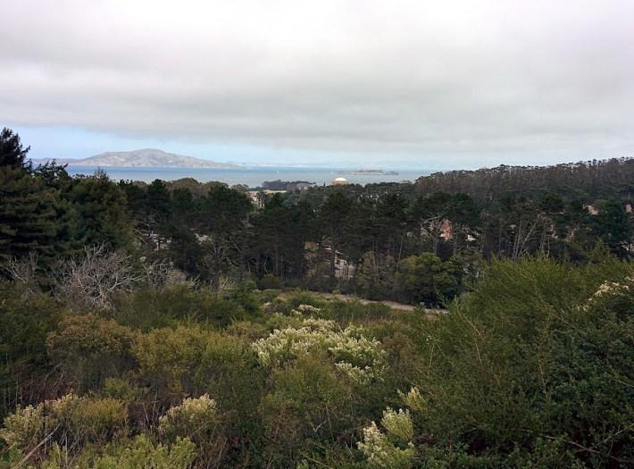 Qué ver en San Francisco. Presidio Real.
