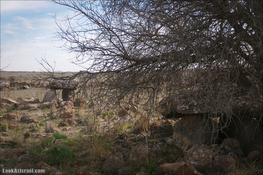 Гамла – водопад и город, висящий в воздухе | LookAtIsrael.com - Фотографии Израиля и не только...