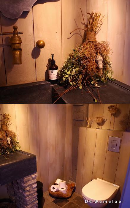 Annabelle toilet.jpg