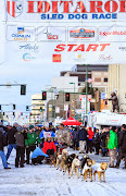 Iditarod2015_0213.JPG