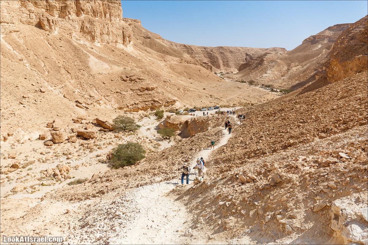 Пеший маршрут по ущелью Барак   Hiking in Wadi (canyon) Barak   ואדי ברק   LookAtIsrael.com - Фото путешествия по Израилю