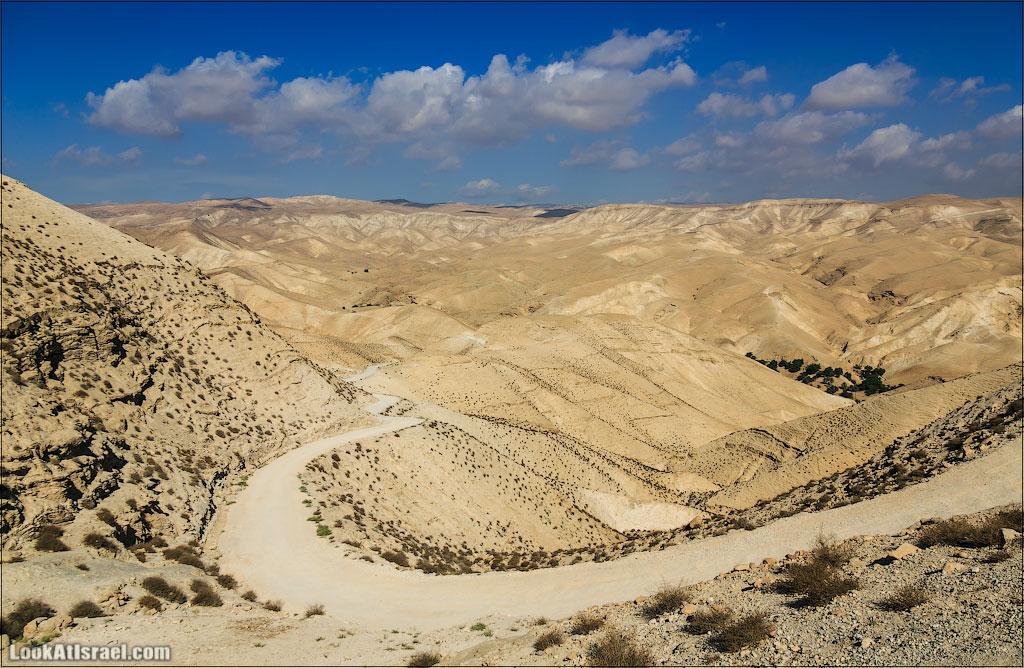 Цветная пустыня