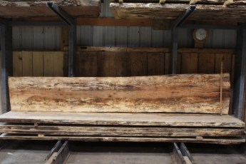 """611 Maple Spalted - 3 10/4x 27"""" x 22"""" Wide x  12'  Long"""