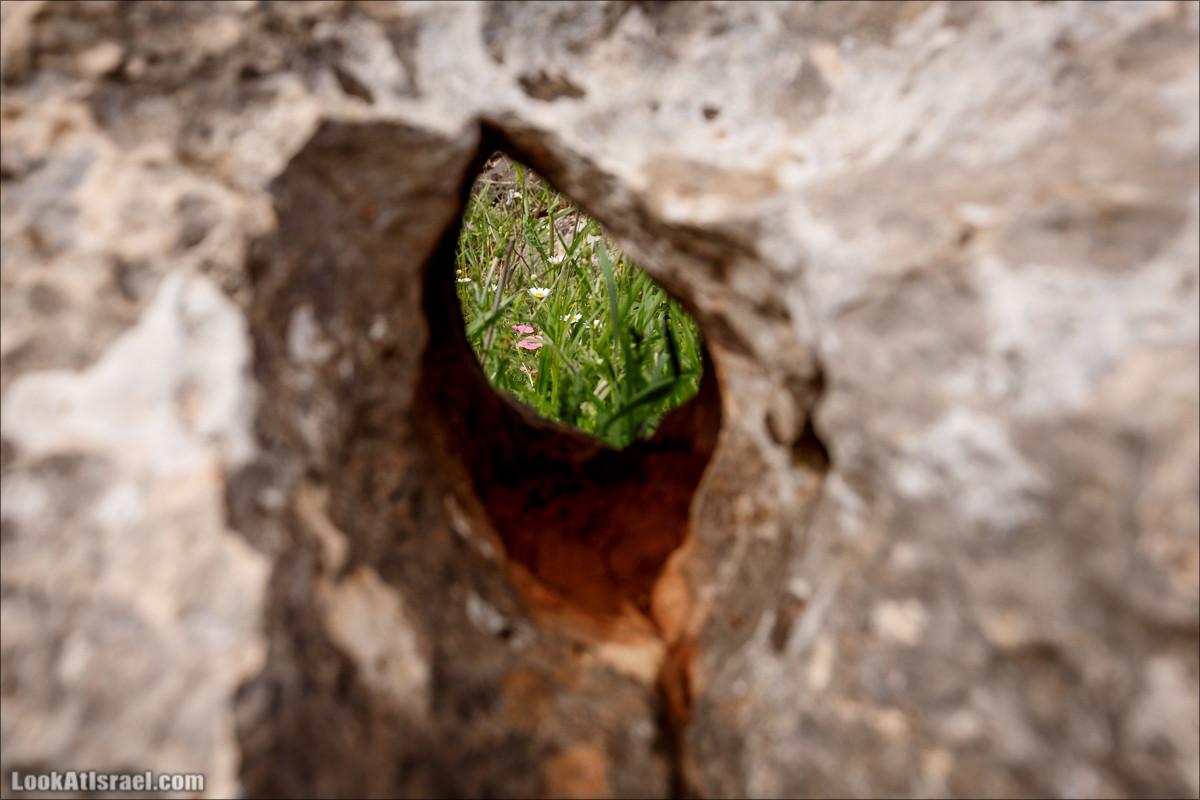 Маленький каньон Разломы Ифтах (Накикей Ифтах) | Iftah splits (Nakikei Iftah) | נקיקי יפתח | LookAtIsrael.com - Фото путешествия по Израилю