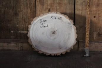 """536 Balm of Gilead -10  2 3/4""""x 14"""" Dia"""