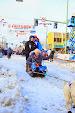 Iditarod2015_0281.JPG