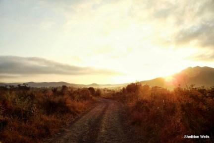 Hluhluwe Landscape at 6:30am