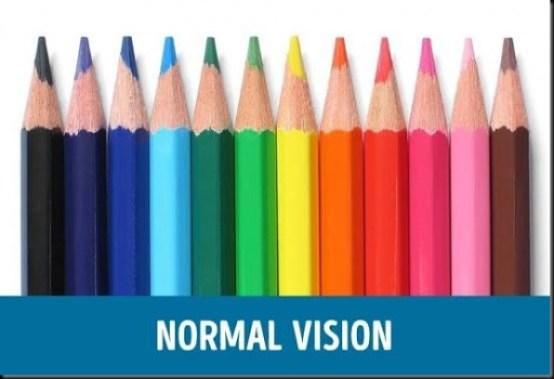 perbedaan mata normal dan buta warna