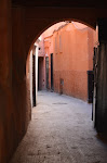 Marrakech par le magicien mentaliste Xavier Nicolas Avril 2012 (128).JPG