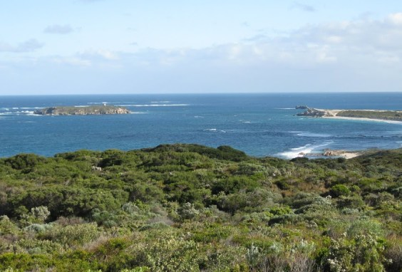 Looking north with Hamelin Island out to sea - Cape to Cape Track