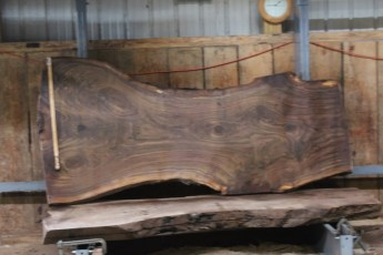 "561  Walnut -6 10/4 x  46"" x  29"" Wide x  8'  Long"