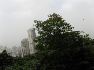 0450City from Victoria Peak