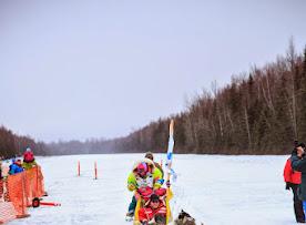 Iditarod2015_0450.JPG