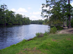 sam-houston-jones-state-park-lake-charles-la-2009 6-23-2009 2-52-22 PM 7-3-2009 10-52-34 AM.JPG