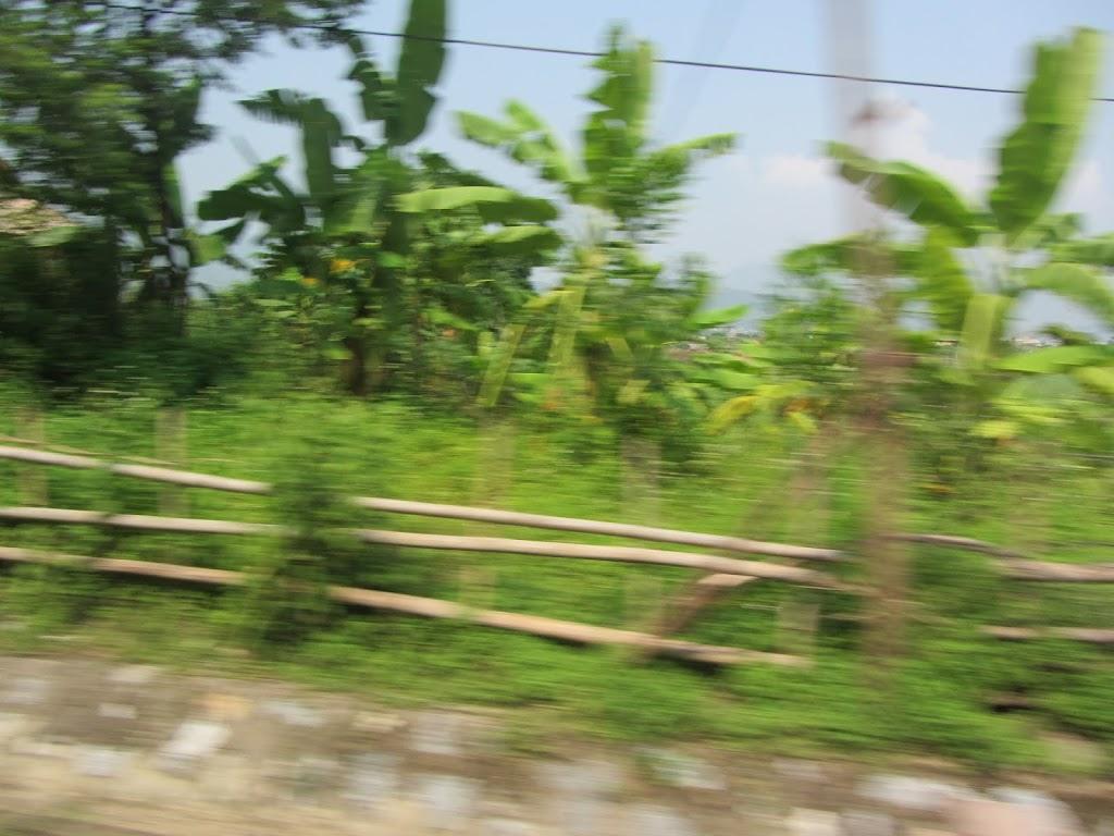 0040The_Road_to_Mai_Chau