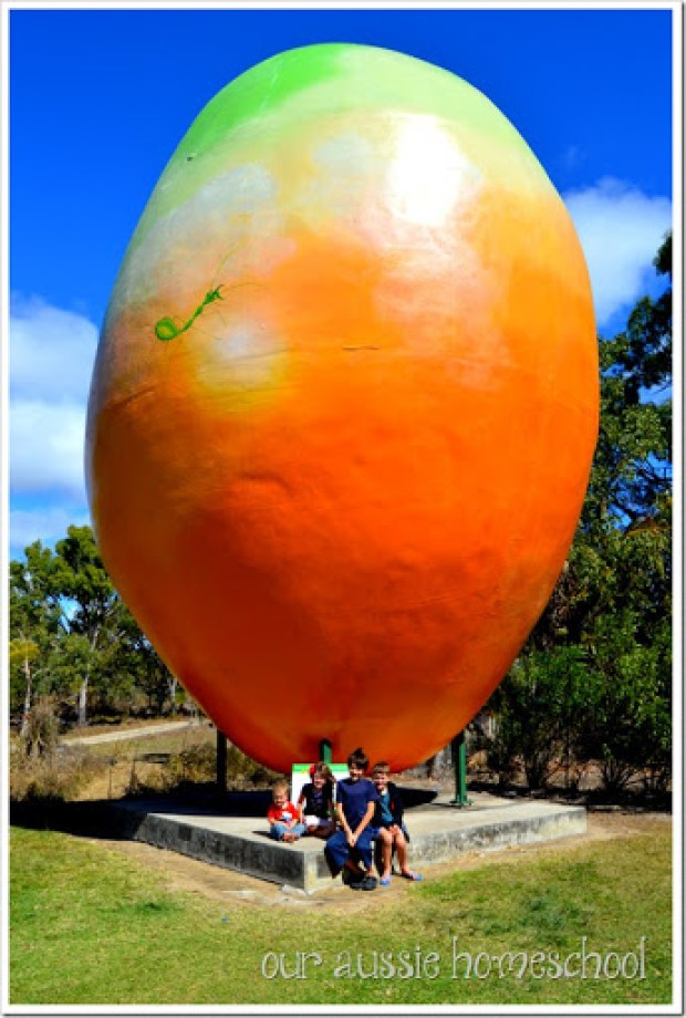 The Big Mango in Bowen, QLD | Our Aussie Homeschool