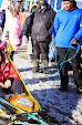 Iditarod2015_0393.JPG