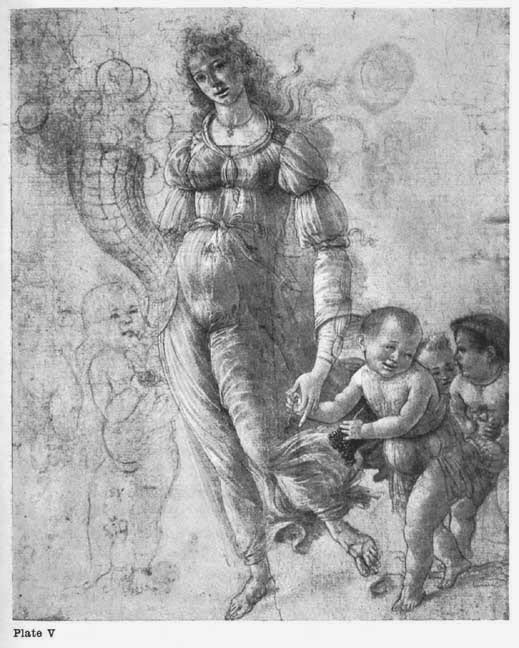 Plate V. FROM A STUDY BY BOTTICELLI In the Print Room at the British Museum.