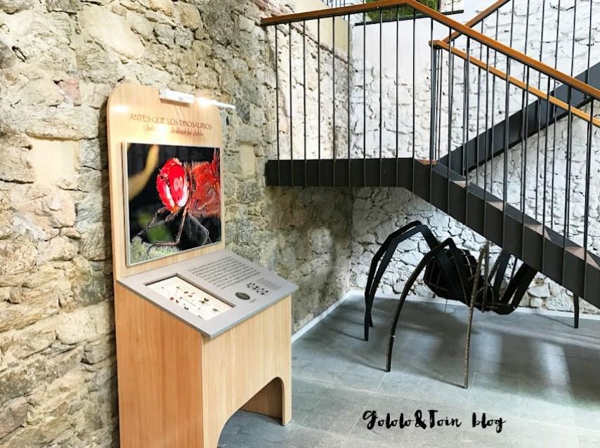 insectpark-centro-naturaleza-ocio-familiar-insectos