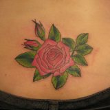 Traditional Rose Tattoo Designs 2015 2016