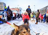 Iditarod2015_0199.JPG