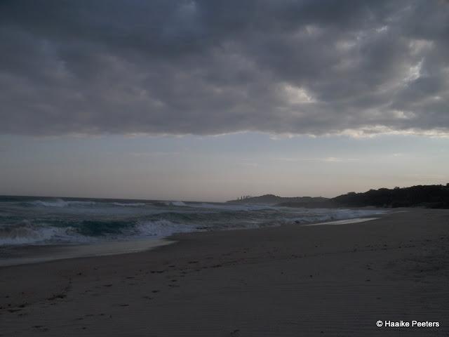 Leisure Bay (Le petit requin)