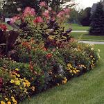 images-Seasonal Color-flowers_6.jpg