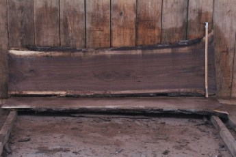 "515 Walnut -7 8/4  x  26"" x  20"" Wide x 8' Long"