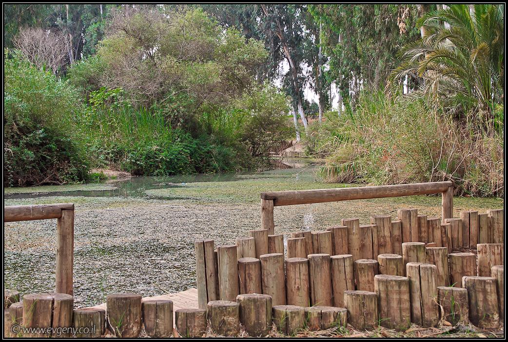 Парк Мекорот ха-Яркон | Park Mekorot ha-Yarkon | מקורות הירקון | LookAtIsrael.com - Фото путешествия по Израилю