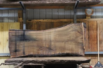 "585  Walnut -6 10/4 x 42"" x  31"" Wide x  8'  Long"