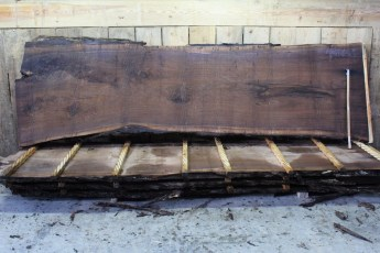 "Walnut 383-6  2 1/2"" x 44-36"" Wide x 12' Long  Kiln Dried"