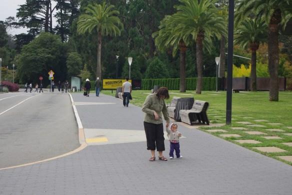 Qué ver en San Francisco. Golden Gate Park.