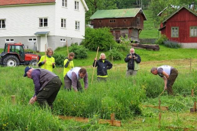 Kosidba u Norveskoj- Turisticka organizacija opštine Ljig207