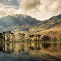 Intermediate 1st - Buttermere Pines_Sarah Walker.jpg