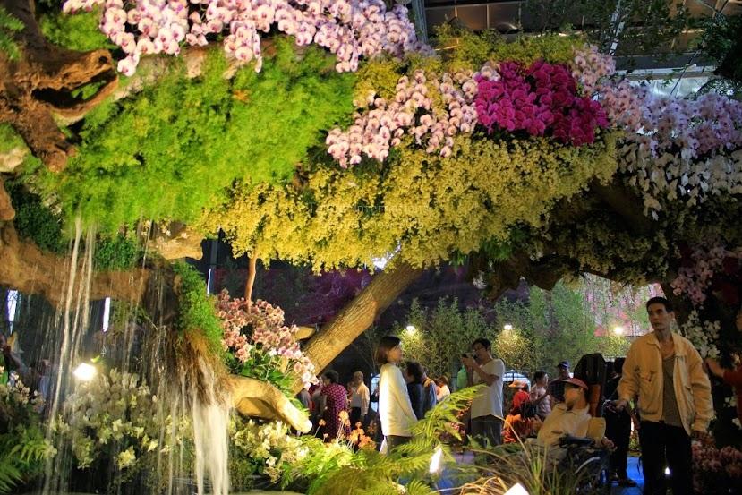2015 台灣國際蘭展,台南國際蘭展-9