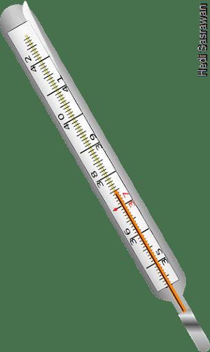 Contoh Termometer : contoh, termometer, Jenis, Termometer, (Beserta, Fungsi, Gambar), Sasrawan