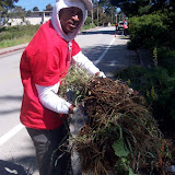 IVLP 2010 - Volunteer Work at Presidio Trust - 100_1416.JPG