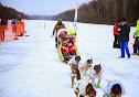 Iditarod2015_0453.JPG