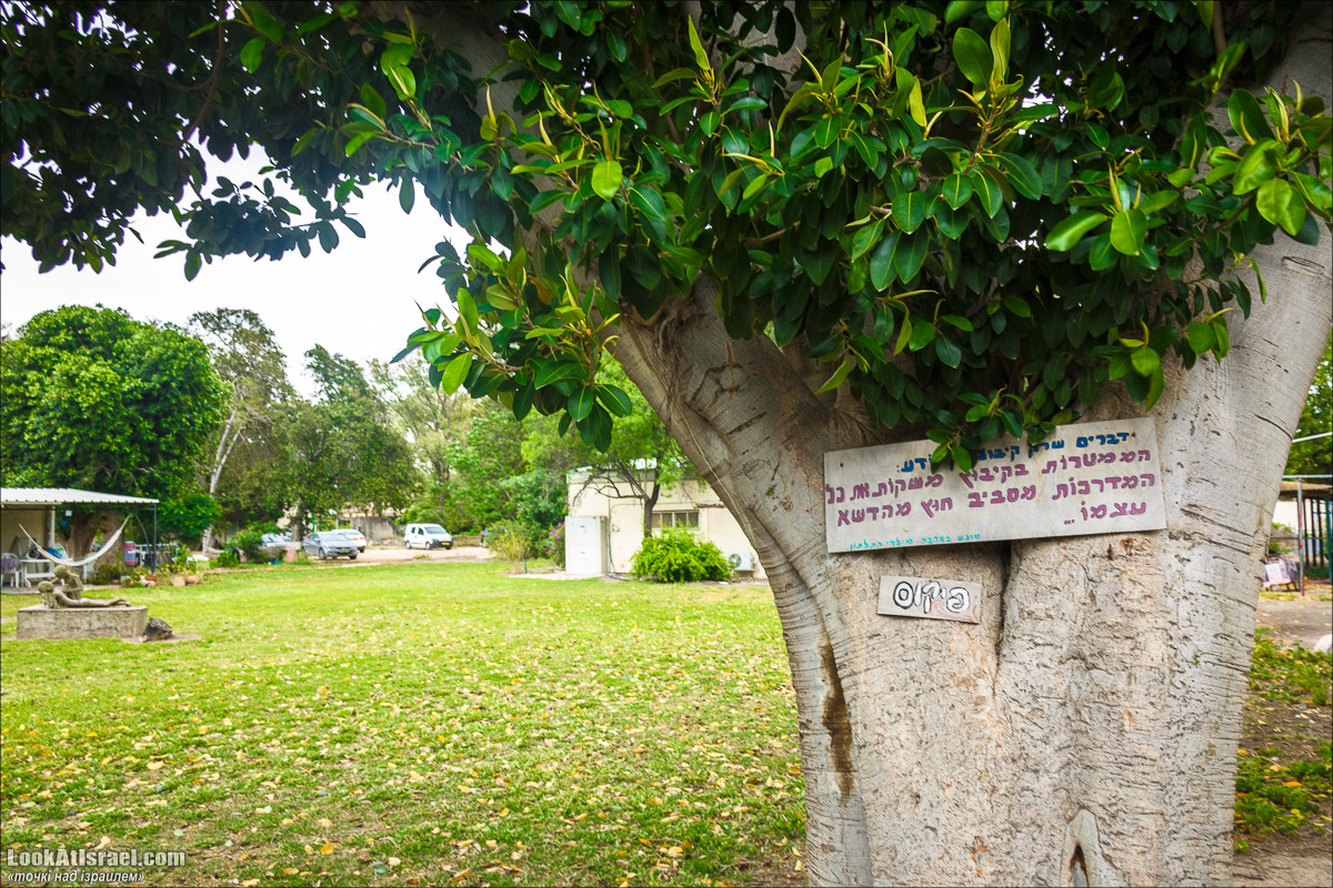 Серия рассказов о городах Израиля «Точки над i» - Решафим | Points over Israel - Reshafim | LookAtIsrael.com - Фото путешествия по Израилю