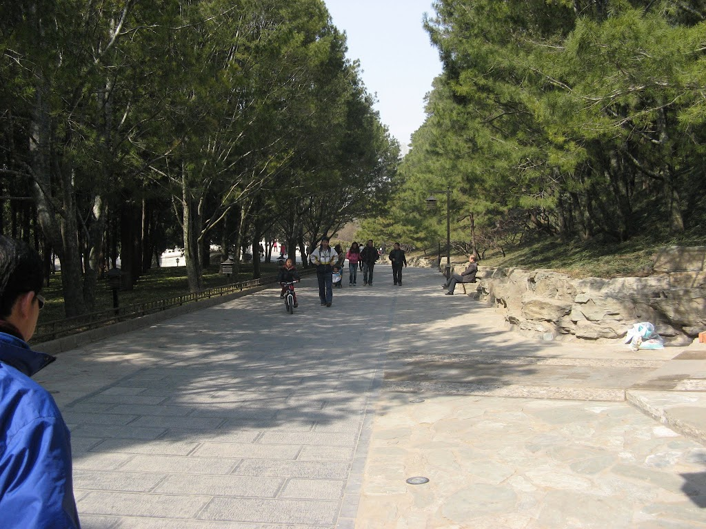 4580The Summer Palace
