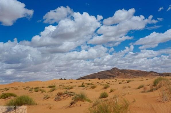 sahara desert-14