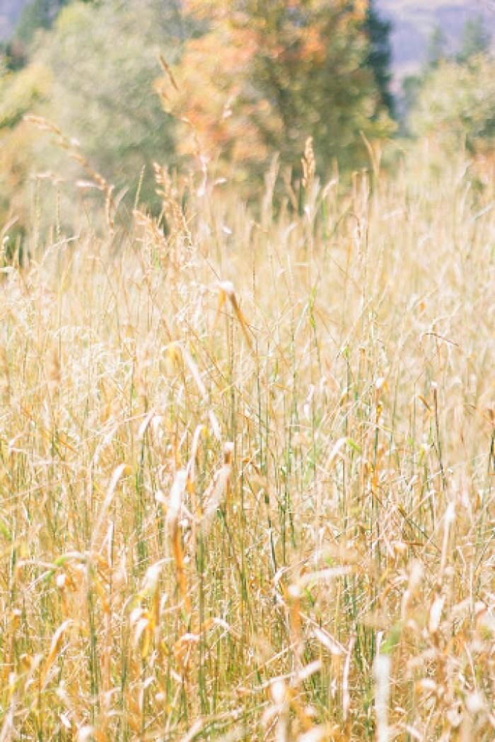 fall hiking in utah (2)