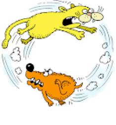 Почему собаки гоняются за кошками?