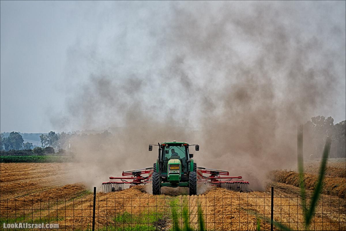 Одно сельскохозяйственное фото