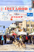 Iditarod2015_0354.JPG