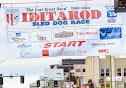 Iditarod2015_0417.JPG