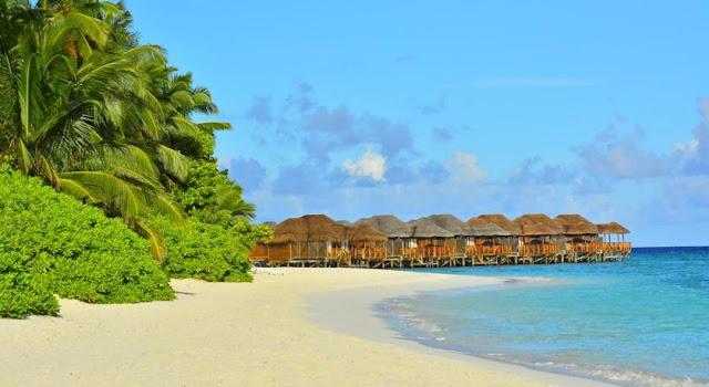 Fihalhohi Island Resort S Ef Bf Bdd Male Atoll
