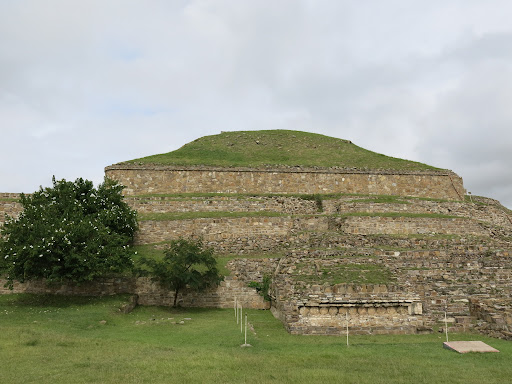 According to our guide Hector, this was a palace and you can see the layers built on top of each other over time. The tree is blossoming with white flowers. No one knows the Zapotec name for this place (it was abandoned in 1100) and the Spanish named it White Mountain (Monte Alban).